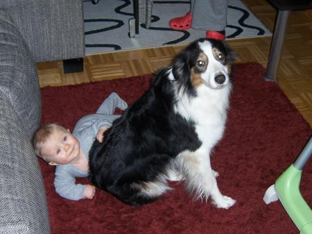 Ich bin meinem hund hilfe schwanger von Descarga Liebes