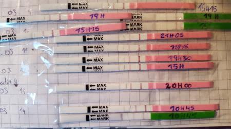 Was ist zuverlässiger ovulationstest oder zervixschleim