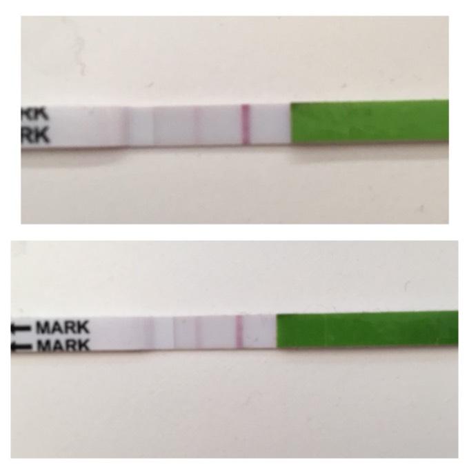 Morgenurin schwangerschaftstest Ab wann