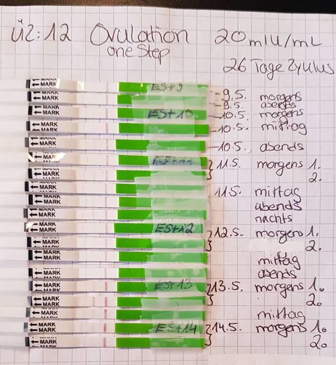 Orakeln ovutest Ovulationstest: Anwendung