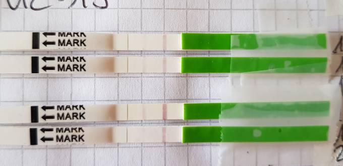 Leicht positiv ovulationstest Pcos ovulationstest